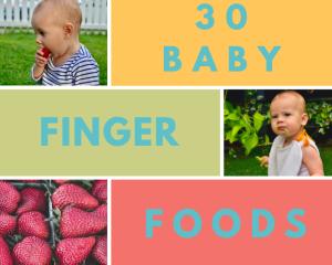 Download 30 baby finger foods