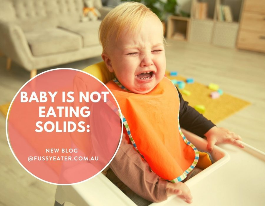 baby is not eating solids